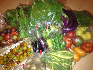 small veggie box from skye